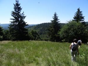 sentier de la Dauphine col de la Serreyrède
