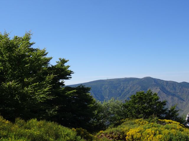 Parc National des Cévennes vue Mont Aigoual