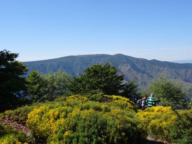 randonnée dans le Parc National des Cévennes vue Mont Aigoual