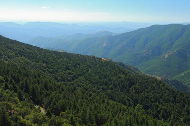Parc National des Cévennes Languedoc-Roussillon