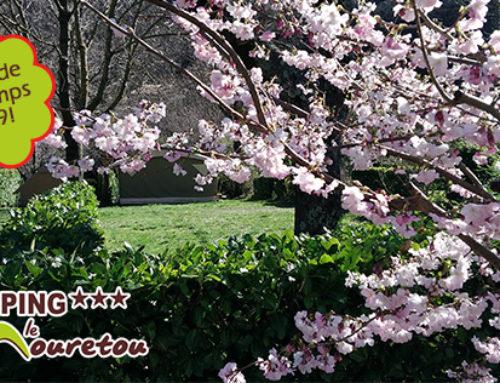 Ouverture, actualités et offres spéciales du printemps 2019